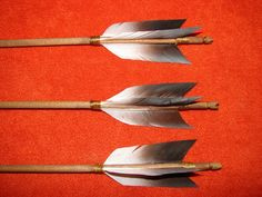 arrow feathers - Google Search