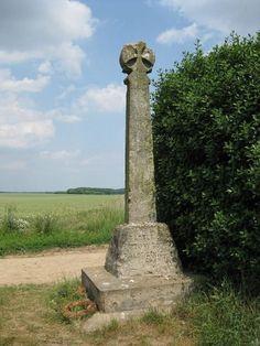 Uk History, British History, Family History, Family Feud, History Facts, Tudor Rose, Wars Of The Roses, Plantagenet, Richard Iii