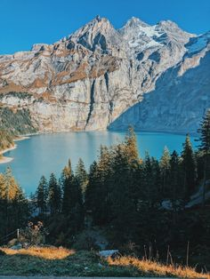 Golden fall afternoon at Oeschinensee - Just moved to Switzerland Best Places In Switzerland, Golden Tree, Adventure Is Out There, Trip Planning, Beautiful Places, Hiking, Europe, Mountains, World