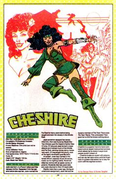 Photo of Cheshire for fans of DC Comics 14485673 Comic Book Villains, Comic Book Characters, Comic Character, Comic Books, Character Design, Make A Comic Book, Marvel And Dc Characters, Dc World, Dc Comics Heroes