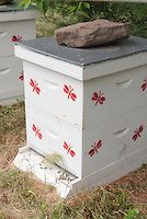 Beekeeping and beehives with bees, showing white bee hive with painted red bees