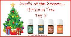 Smells of the Season- Day 2 (Christmas Tree)