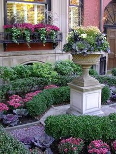 Fall Landscaping with mums, kale, boxwood | LUCY WILLIAMS INTERIOR DESIGN BLOG: MY NEW YORK CITY PAD.....IF ONLY I HAD THE $$$!