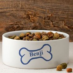 Colorful Classic Small Dog Bowls