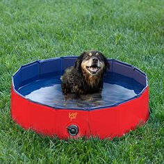 Frontpet Foldable Dog Pet Pool Bathing Tub (32 Inches X 11.8 Inches) * You can find more details by visiting the image link. (This is an affiliate link)