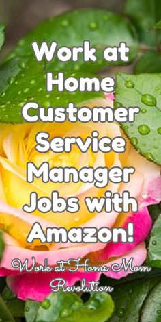 Work at Home Customer Service Manager Jobs with Amazon! / Work at Home Mom Revolution