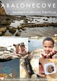 Things to do in Southern California with Kids this Summer: Abalone Cove Tide Pools. #LegacyStartsWithSummer