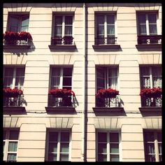 French windows. Is there anywhere in the States this charming?