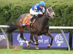 Tepin took home the win in the 2015 Breeders' Cup Mile, in which the four-year-old filly defeated eleven males.  She joins Royal Heroine (1984), Miesque (1987-1988), Ridgewood Pearl (1995), Six Perfections (2003), and Goldikova (2008, 2009, 2010) as  a filly defeating the boys in the Breeders' Cup Turf Mile.