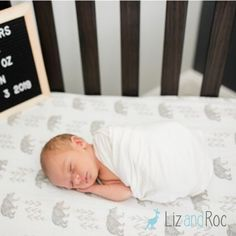 Your little one will sleep soundly on these sweet gray and taupe bears. Liz and Roo's Cubby Collection can be customized to fit your style. Shop our woodland and modern farmhouse bedding today! Woodland Baby Bedding, Woodland Nursery, White Nursery, Nursery Neutral, Baby Bedding Sets, Nursery Bedding, Tribal Nursery, Nursery Design, Crib Sheets