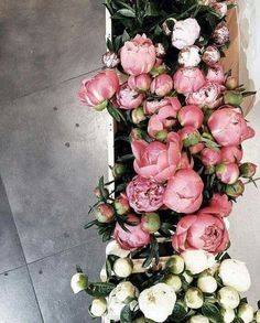 Silk flowers online australia melbourne sydney wedding peony silk flowers online australia melbourne sydney wedding peony peonies pinterest flowers online peony and flowers mightylinksfo
