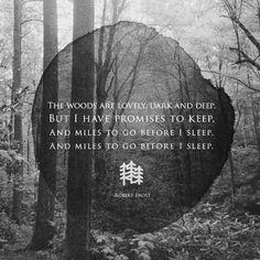 The woods are lovely, dark and deep. But I have promises to keep, and miles to go before I sleep, and miles to go before I sleep.