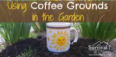 Using Coffee Grounds in the Garden » Survival at Home