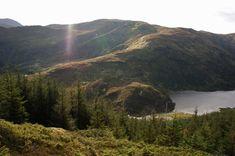 Herlandsfjellet, 694 moh.   Mountains, Nature, Travel, Summer, Naturaleza, Viajes, Destinations, Traveling, Trips