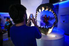 También un modelo a escala de tiburón zorro e incluso, la réplica de la mandíbula de un megalodón, una especie gigante de los mares que se extinguió hace aproximadamente 1.5 millones de años, mide casi dos metros de alto y es una de las piezas más emblemáticas del Museo de Historia Natural.