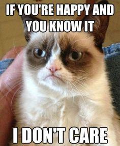 grumpy cat is always funny