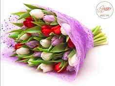 Express your love by sending real flowers. Send love friendship flowers Dubai, Sharjah, and Ajman and get free delivery on same day. Red Tulips, Tulips Flowers, Flowers For You, Real Flowers, Flowers Pics, Flower Bokeh, Friendship Flowers, Send Flowers Online, Love Spell That Work