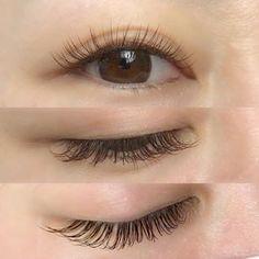 Makeup For Small Eyes, Doll Eyes, Korean Makeup, Eyelash Extensions, Bridal Makeup, Lip Makeup, Eyelashes, Makeup Looks, Lips