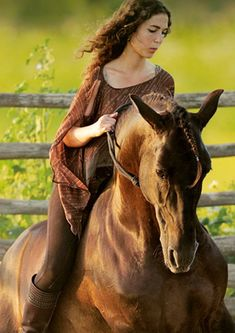 "Lusitano stallion ""Atila""  | Kenzie Dylsi     http://kenzie-dysli.de/atila.html"