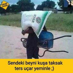 Na tyto posily z Afriky se nemohu dočkat. Ridiculous Pictures, Funny Pictures, Funny Ads, Funny Jokes, Funny Share, Do Men, Thing 1, Funny Happy, Like A Boss