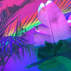 """sleazeburger: """" Projecting palms onto palms Print sale happening for a few more…"""