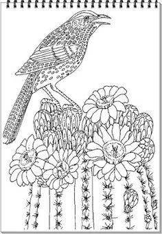 1000+ images about Animals Coloring Pages For Adults on ...