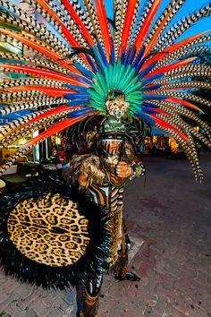 I hope to see! Riviera Maya, Mayan Glyphs, Arte Plumaria, Aztec Culture, Inca Empire, Caribbean Carnival, Puerto Morelos, Mexico Art, Quintana Roo