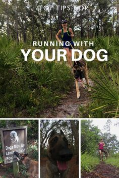 Tips for Running with Your Dog from Trail Jenny the Wilderness Girl