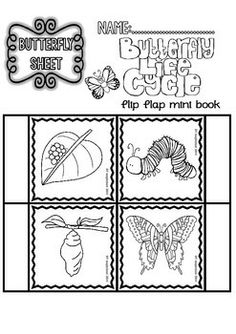 Butterfly ( Ready to Print Easy Readings and Worksheets)