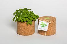 Grow cork manjericão Life in a bag