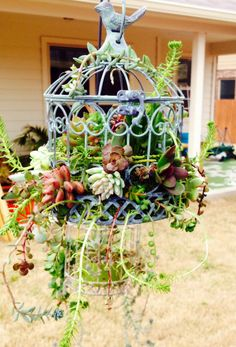 20 Clevere Möglichkeiten, Ihren Garten mit Vogelkäfigen noch schöner zu machen