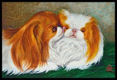 Japanese Chin Best Friends Indoor or Outdoor Mat 24x36 MH1045JMAT