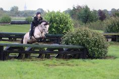 horse on a cross country course, jumping a tyre jump.