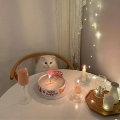 Cats Wallpapers ✧ Cute Baby Cats, Cute Little Animals, Kittens Cutest, Cats And Kittens, Cute Babies, Image Chat, Cat Aesthetic, Jolie Photo, Cute Creatures