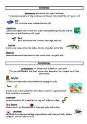 english worksheet a science test about vertebrates and invertebrates education vertebrates. Black Bedroom Furniture Sets. Home Design Ideas