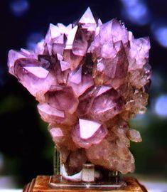 Quartz var. Amethyst cluster... by Kevin Ward