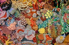 crocheted coral reef.