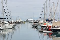 Susie L: Antibes - Riviera Francesa