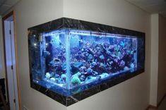 Afbeeldingsresultaat voor in wall corner aquarium