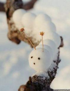 ☆ White Christmas Wonderland ☆ Snow Catepillar   Martha Stewart
