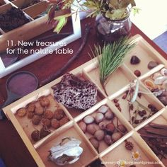 Reggio inspired activities nature table {An Everyday Story} Nature Activities, Creative Activities, Activities For Kids, Preschool Science, Preschool Classroom, Discovery Day, Reggio Emilia Classroom, Inspired Learning, Nature Table