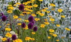 Garden ideas, Border ideas, Plant Combinations, Flowerbeds Ideas, Summer…