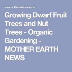 Growing Dwarf Fruit Trees and Nut Trees - Organic Gardening - MOTHER EARTH NEWS
