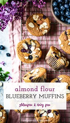 These easy Almond Flour Blueberry Muffins are moist and dairy free. Made with almond flour, they are a perfect treat for a healthy breakfast or a snack.  #blueberrymuffins #glutenfreemuffins #glutenfree #glutenfreebaking #almondflour #paleomuffins #almondflourmuffins #recipe #foolproofliving