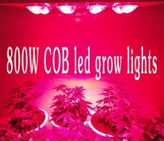 568.88$  Watch now - http://alibzb.worldwells.pw/go.php?t=1881239726 - 2015 Newest Big eyes 800W LED Grow Light Lamp Panel Indoor UFO Hydroponic System