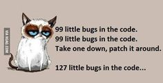 The life of a software developer :g