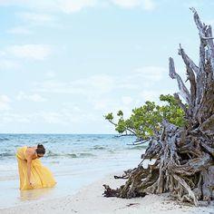 What to Do: Explore a Quiet Beach - 8 Reasons We Love Sanibel Island, Florida - Coastal Living