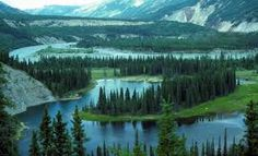 A view of Horseshoe Lake in Alaska's Denali National Park. (From: PHOTOS: 11 Affordable Bucket List Adventures) Custer State Park, Adventure Bucket List, Vacation Trips, Vacation Ideas, Nature Images, Budget Travel, Travel Usa, Places To See, Beautiful Places