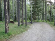 Whistler Campground, Jasper. The 1 thing missing from this picture is the elk. They are everywhere. Bears frequent the campground. At 10pm in summer you can look up and still see Whistler Peek lit with the evening sun. Close to town and cable car ride up peek. Just off Icefields Parkway. No reservations. Line up by 10am to get in. Dispose of all dish water into flush toilets and keep all pots & pans locked away. Stay 2-3 days. Evening Sun, Trail Maps, Girl Guides, Whistler, Toilets, Elk, Canoe, Looking Up, Jasper
