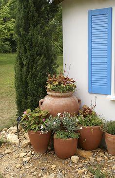 Mediterranean Garden, Mediterranean, colour, inspiration